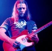 David Gilmour - Telecaster