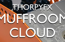 Thorpy FX Muffroom Cloud