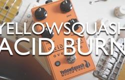 Yellowsquash Acid Burn