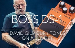David Gilmour - Boss DS-1