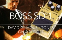 David Gilmour - Boss SD-1