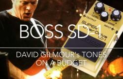 David Gilmour - Boss SD-1